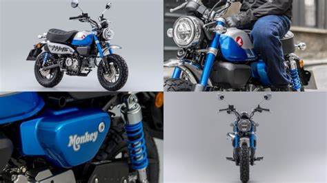 Honda Monkey 2022 : Euro 5 et boite 5 rapports