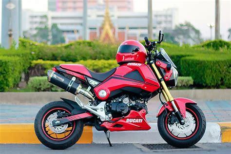 Honda MSX 125 mini Ducati | Ducati, Honda, Motorcycle