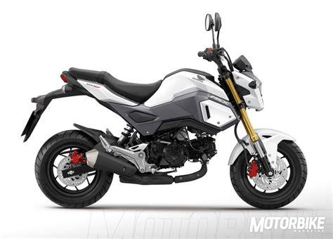 Honda MSX125 2016   Precio, fotos, ficha técnica y motos ...