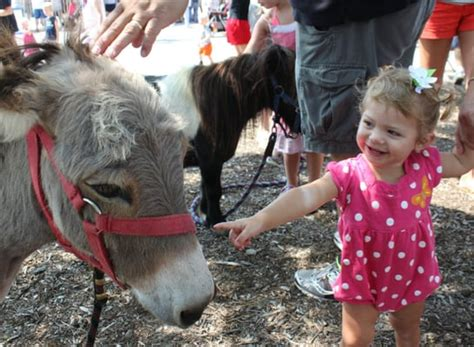Honey Hill Farm Mobile Petting Zoo and Pony Rides   Party ...