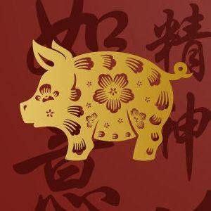Horóscopo Chino 2020 para Cerdo o Jabalí | Animal ...