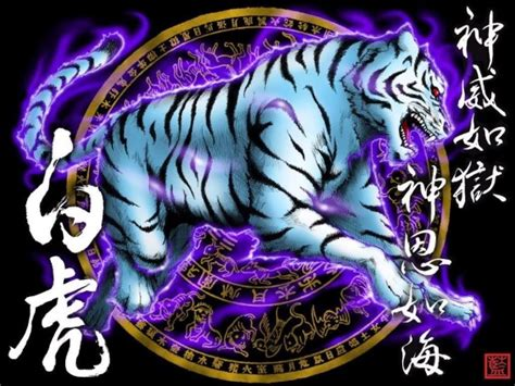 horoscopo chino   Chisanar, Medicina Tradicional China