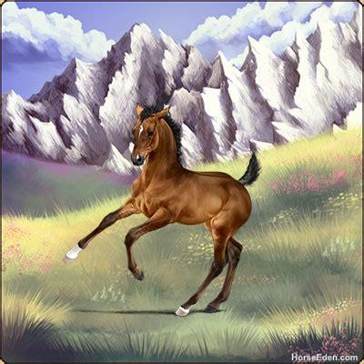 Horse Eden: Online Horse Game | Breed Horses | Free Horse ...
