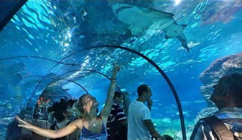 Hotel + Entradas Aquarium Barcelona