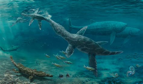 How Marine Reptiles Reacted to Changing Conditions During ...