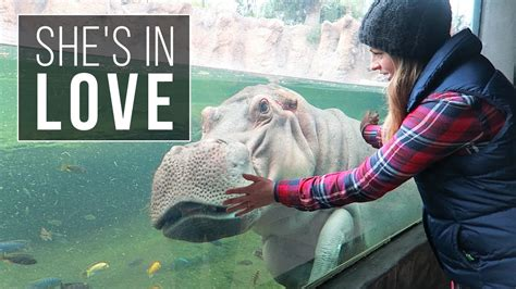 How NOT to Visit the San Antonio Zoo & Moving on to Corpus ...