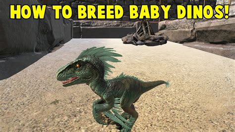 How to Breed Baby Dinos! Ark Survival Evolved   YouTube