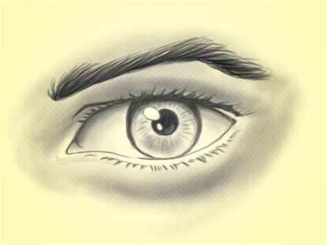 How to Draw a Realistic Eye: 14 Steps  with Pictures