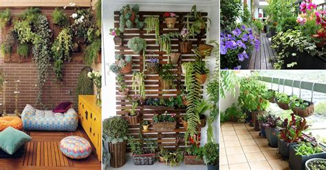 How to Make a Balcony Garden