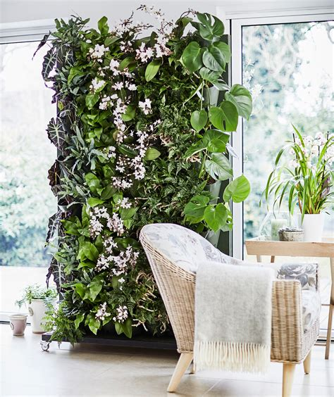 How to make a living plant wall | Ideal Home