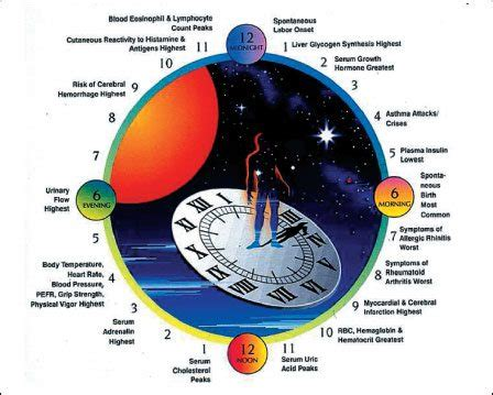 How To Re Time Your Circadian Rhythms