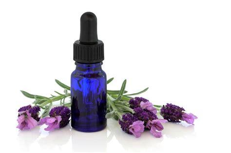 How To Use Flower Essences: 6 Easy Ways | Essential oils ...