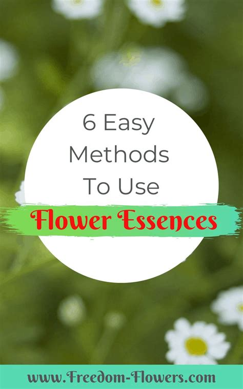 How To Use Flower Essences: 6 Easy Ways  With images ...