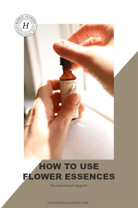 How To Use Flower Essences for Emotional Support | Flower ...