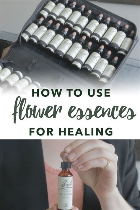 How to use Flower Essences for Healing | Holistic remedies ...