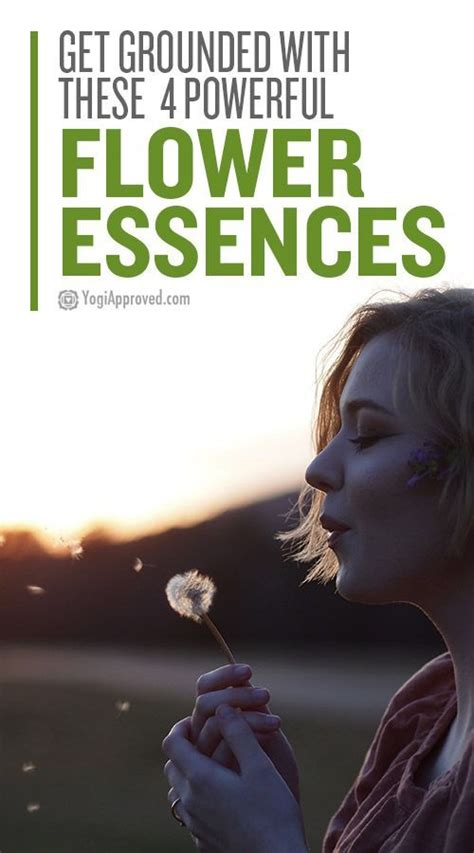 How to Use the Healing Power of Flower Essences to Reduce ...