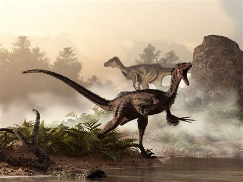 How Velociraptor Was Discovered