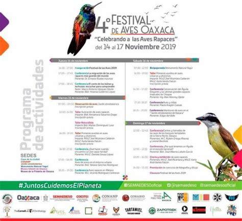 Hoy inauguran el IV Festival de las Aves Oaxaca | Aves ...