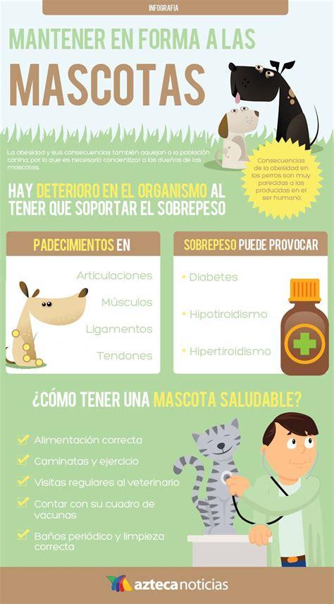 http://static.tvazteca.com/imagenes/2015/20/mascotas ...