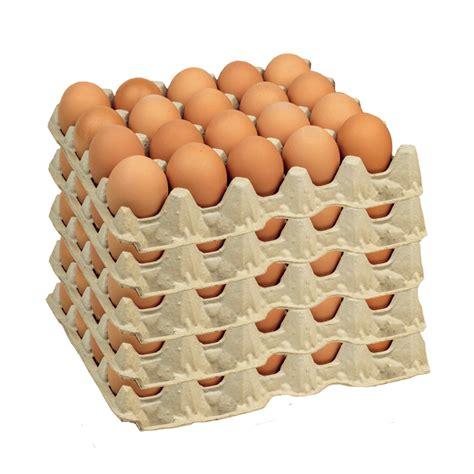 Huevos Color Jumbo XL  100 Unidades  – Nutritivo Chile ...