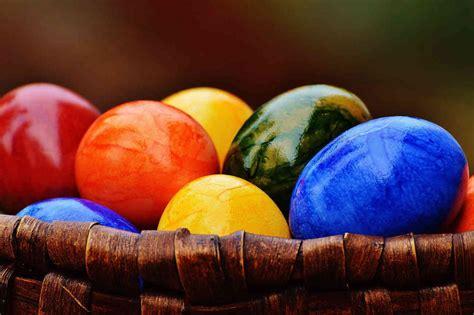 Huevos de colores 【 Origen y Características 】  Aves de corral