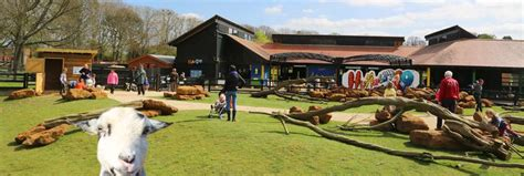 Hullabazoo Farm | Zoological Society of London  ZSL