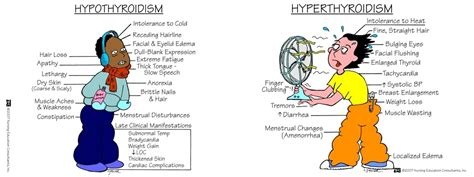 Hyperthyroidism vs. Hypothyroidism ~ The Issues of ...