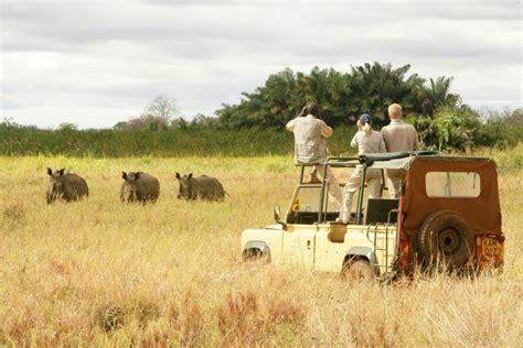 I tre parchi   4 Giorni Kenya   Jambo Tour