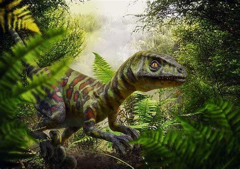 I velociraptor non cacciavano in branco come in Jurassic ...