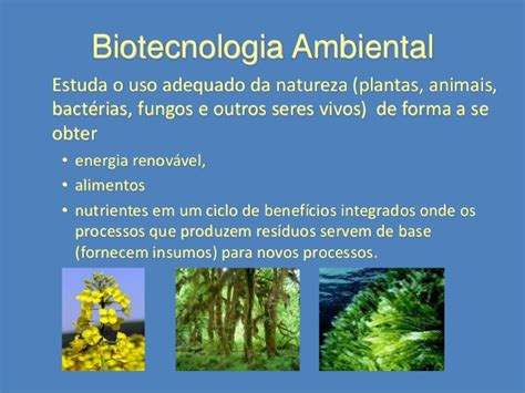 ICSA06   Biotecnologia Ambiental