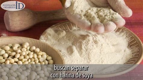 ID divulga: Con harina de soya, estudiantes buscan ...