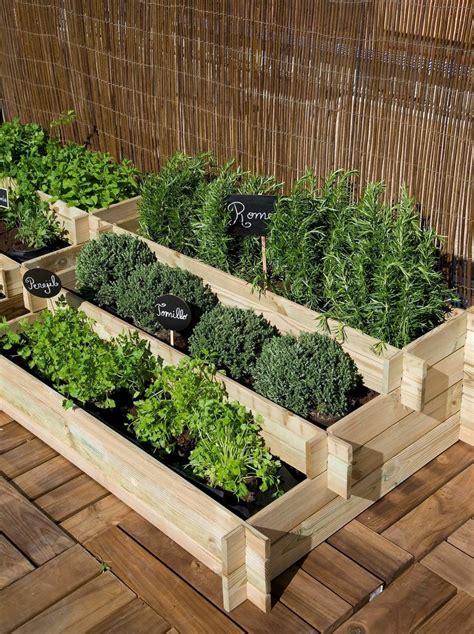 Ideas con vida para jardines y terrazas | Bricolaje