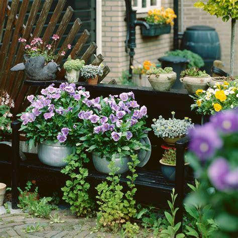 Ideas para decorar tu terraza con plantas de otoño e ...