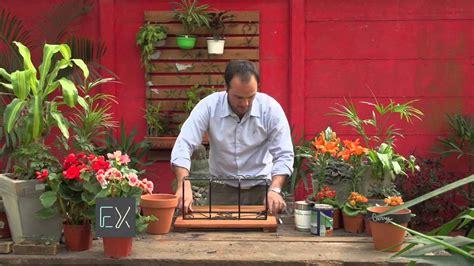 Ideas para Jardines de Pared  Parte I    YouTube
