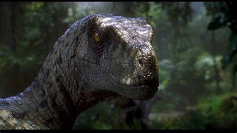 If The Velociraptor From Jurassic Park Were Your ...