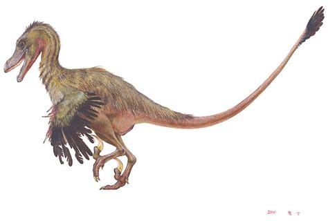 Il Velociraptor #LegaNerd