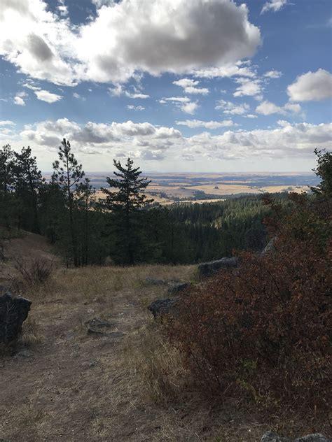 Iller Creek Conservation Area Trail   Washington | AllTrails