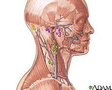 Illustration of the lymph nodes in the head and neck ...