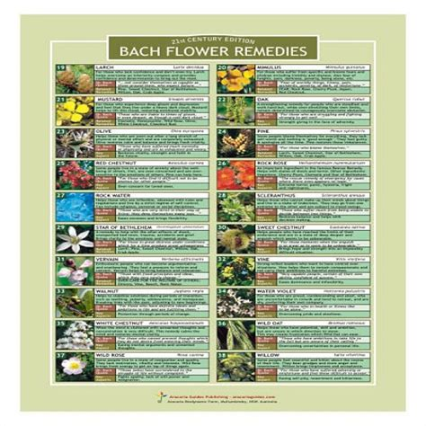Image for Bach Flower Remedies Chart | Bach flower ...