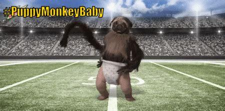 Image   Puppymonkeybaby.gif   Just Dance Wiki   FANDOM ...