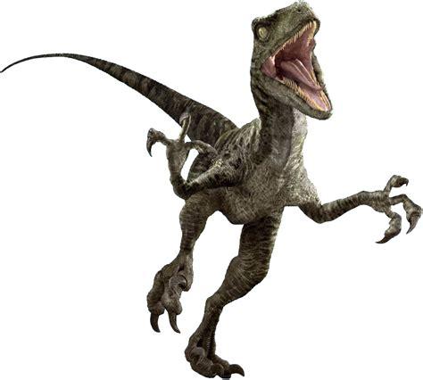 Image   Raptor Render edited.png   Jurassic Park wiki ...