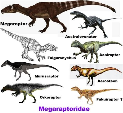 Image result for megaraptor fossils | Prehistoric animals ...
