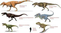 Image result for tarbosaurus vs t rex | Beautiful Paleo ...