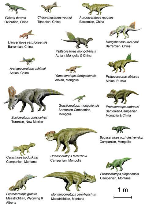Imagem dinossauros  basal ceratopsia    img 14792