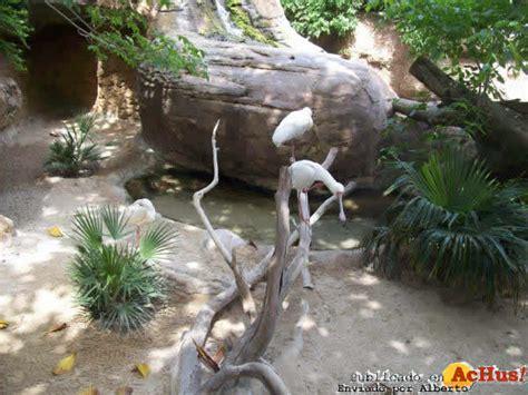 Imagen de Zoo Fuengirola Zoo Fuengirola 40