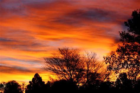 Imagen gratis: amanecer de colores, árboles, silueta, el ...