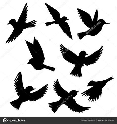 Imágenes: aves siluetas   conjunto de vectores de siluetas ...