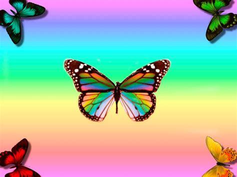 Imagenes coloridas de mariposas :: Imágenes y fotos