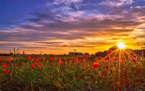 Imágenes de amanecer en el campo – Reflexiones y pensamientos