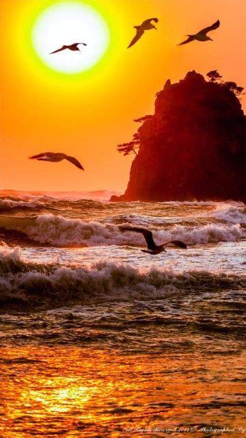 imagenes de atardeceres en el mar para dibujar | SUNSET ...